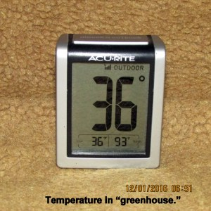 Temperature in green house
