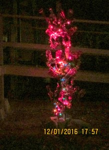 Lights on Bottle Tree