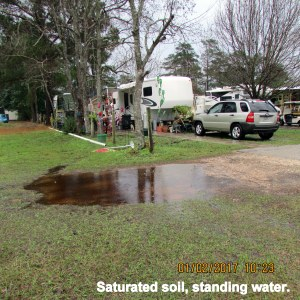 Saturated soil standing water