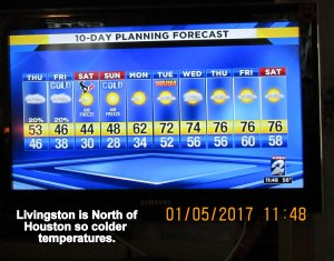 TV weather at noon