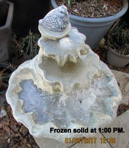 Fountain frozen solid