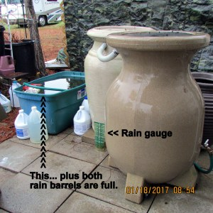 Rain barrels are full