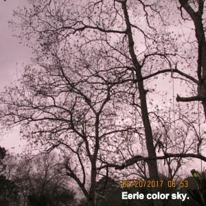 Eerie color sky