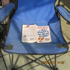 Book in a lawn chair