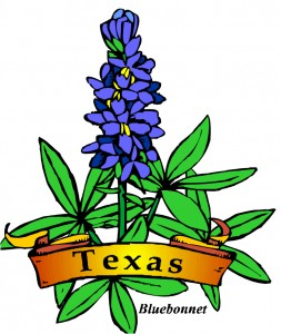 texas-bluebonnet-flower