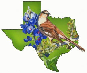 texas-shape-with-blue-bonnet-and-bird